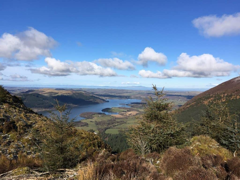 Looking towards Bassenthwaite from the top of Dodd Wood Summit